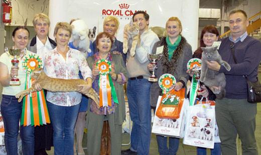 """Клуб любителей кошек """"Москва"""" приглашает всех любителей кошек принять участие и просто посетить Международную выставку кошек """"Весенний Кэт-Салон"""""""