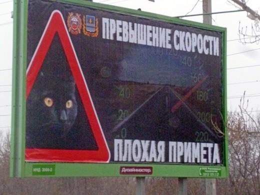 ГИБДД разместила у дорог рекламу с животными