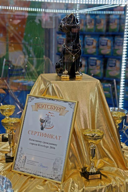 Победитель получит титул «Почётный гражданин Кэтсбурга-2017» и золотой украшенный бриллиантами ключ от города.