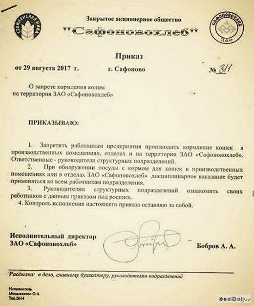 Директор хлебокомбината в Сафонове запретил кормить кошек на заводе