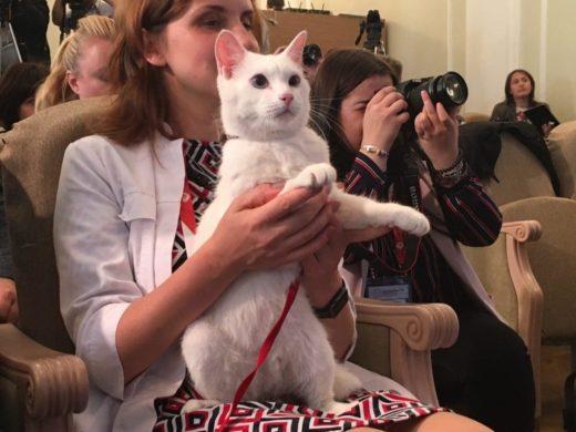 Эрмитажный кот Ахилл будет оракулом на ЧМ-2018