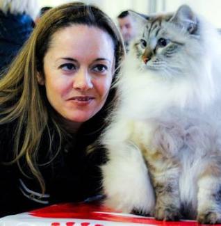 Сибирский кот «рулит» на Коста Бланке
