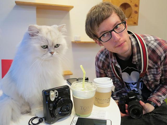 Формула успеха для кофеен — «круассан, кофе и кот»