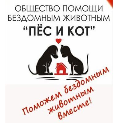 2 приюта для животных из Череповца отметили на премии «Волонтер года»